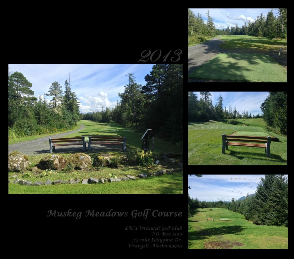 Publication fairway 1-3 collage 2013